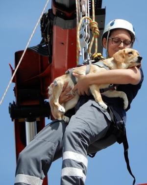 BRK Rettungshundestaffel: Abseilübung
